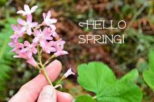 Putting Spring Back In Your Step