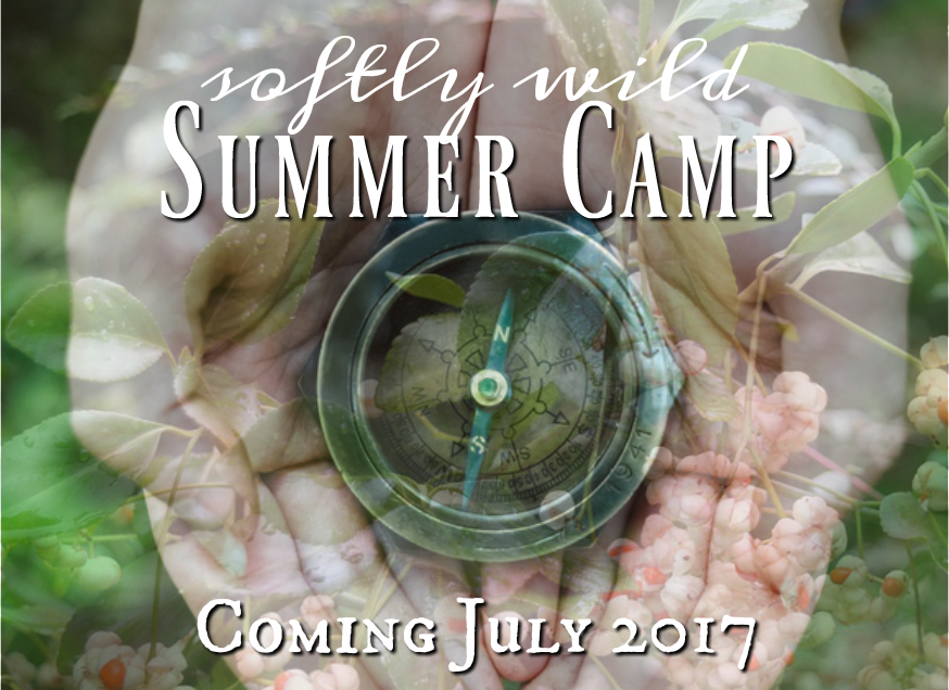 Softly Wild Summer Camp Coming Soon horiz banner 2