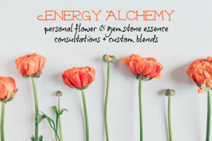 Now offering personal flower & gemstone essence consultations + custom blends of essence elixirs!